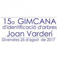 Viladrau 15a Gimcana Joan Varderi