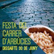 Viladrau Festa del Carrer d'Arbúcies