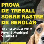 Viladrau Prova de treball sobre rastre de senglar 2019