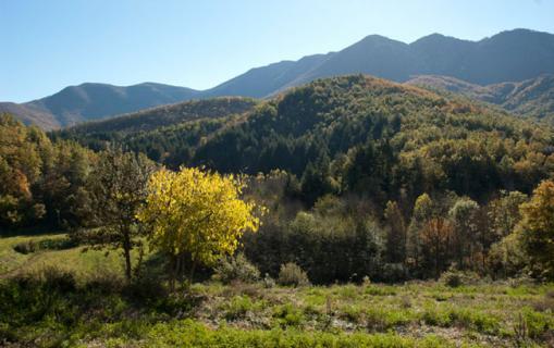 El Montseny, Viladrau