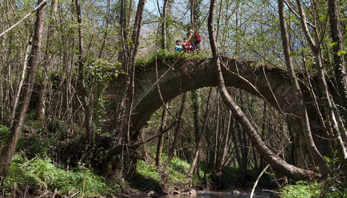 Pont de Can Pau Moliner