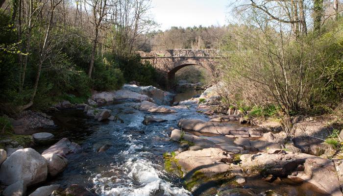 Pont de Fàbregues