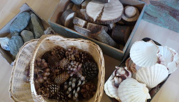 pinyes, fusta, cloises i pedres