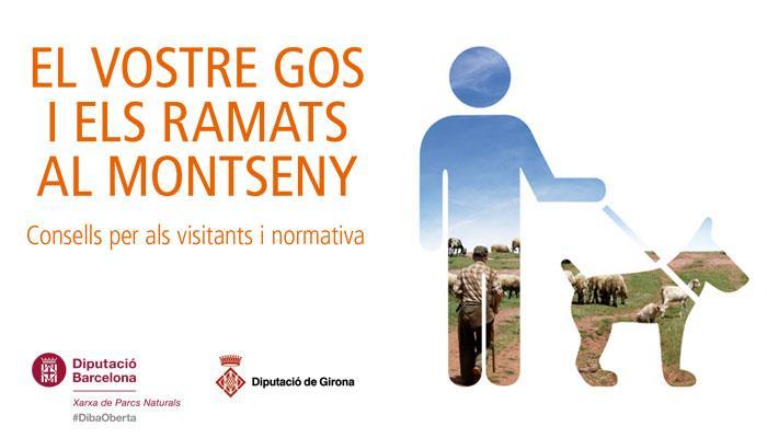"""Viladrau """"El vostre gos i els ramats al Montseny"""""""