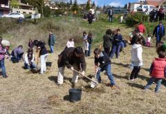 Festa de l'Arbre. Viladrau